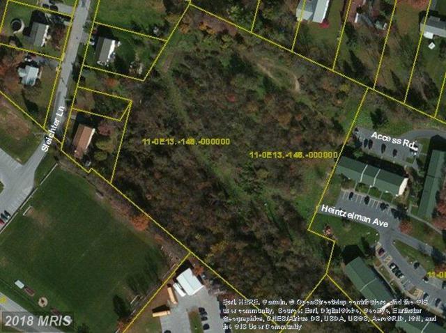 Sleichter Lane, Chambersburg, PA 17201 (#FL10185914) :: Arlington Realty, Inc.