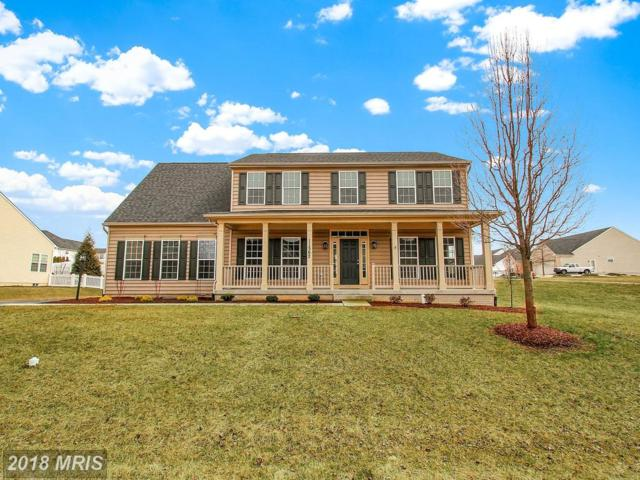 11562 Buhrman Drive W, Waynesboro, PA 17268 (#FL10194185) :: The Bob & Ronna Group
