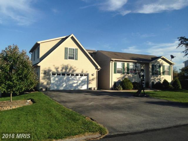 8991 Kline Drive, Greencastle, PA 17225 (#FL10201122) :: Browning Homes Group