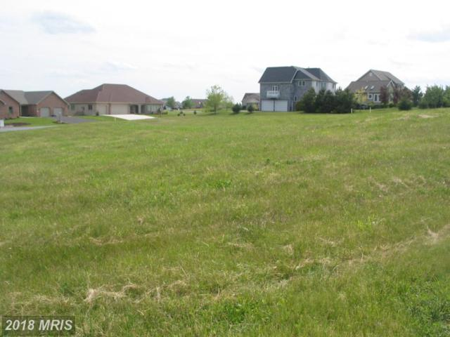 6358 Saucon Valley Drive, Fayetteville, PA 17222 (#FL10212871) :: Browning Homes Group