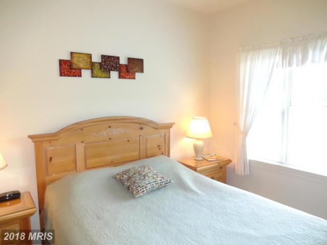 14201 Barberry Court #203, Mercersburg, PA 17236 (#FL10237547) :: Dart Homes
