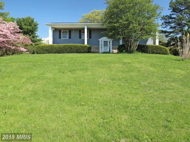 25 Warwick Drive, Chambersburg, PA 17201 (#FL10240525) :: The Withrow Group at Long & Foster