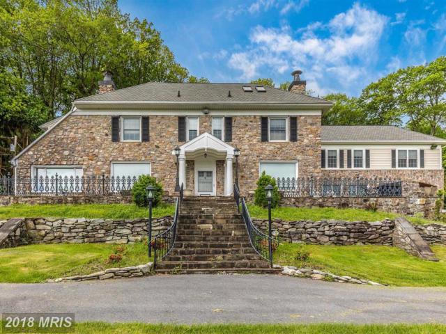 14322 Carrosmar Farm Road, Waynesboro, PA 17268 (#FL10251630) :: Charis Realty Group