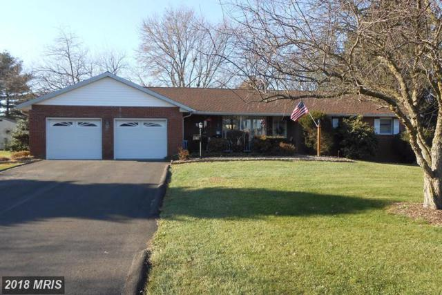 20 Lippizan Drive, Shippensburg, PA 17257 (#FL10265088) :: The Gus Anthony Team