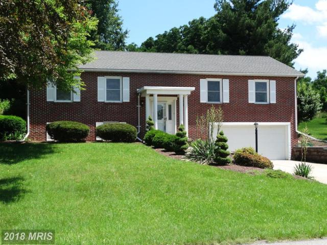 3758 Clubhouse Drive, Fayetteville, PA 17222 (#FL10268070) :: The Bob & Ronna Group