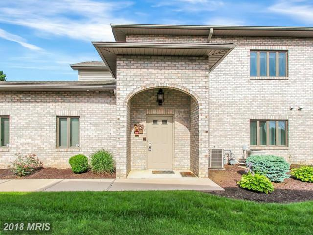 6397 9TH View, Fayetteville, PA 17222 (#FL10281990) :: Charis Realty Group