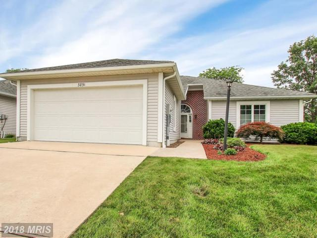 3891 Alfalfa Lane, Fayetteville, PA 17222 (#FL10283444) :: Charis Realty Group