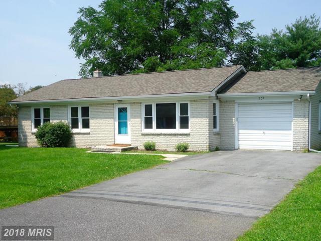 203 University Drive, Mont Alto, PA 17237 (#FL10321918) :: Keller Williams Pat Hiban Real Estate Group