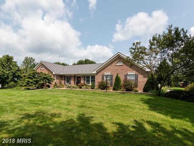 3125 Roxbury Road, Shippensburg, PA 17257 (#FL10333340) :: Keller Williams Pat Hiban Real Estate Group