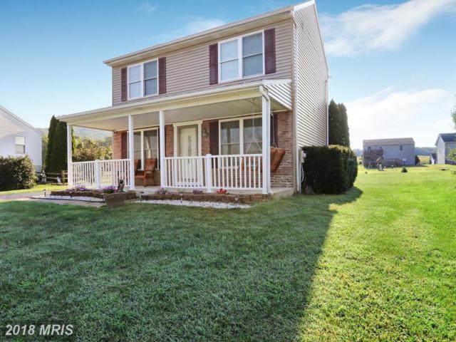 3772 Mountain Shadow Drive, Fayetteville, PA 17222 (#FL10339077) :: Keller Williams Pat Hiban Real Estate Group