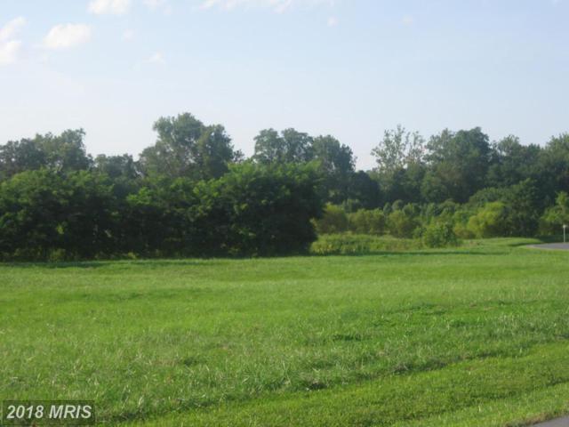 9 Lot 9C North Welty N, Waynesboro, PA 17268 (#FL10350422) :: Keller Williams Pat Hiban Real Estate Group