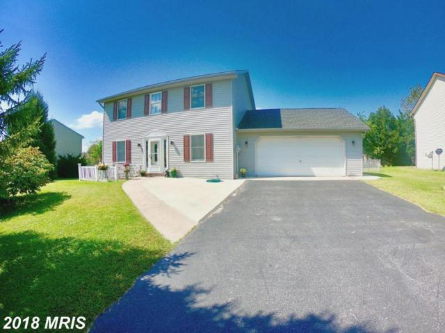 275 Arbutus Drive, Chambersburg, PA 17202 (#FL10354052) :: Browning Homes Group