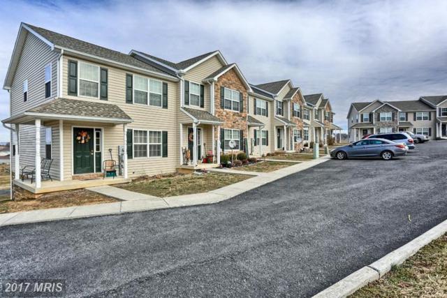 349 Viewpoint Way, Waynesboro, PA 17268 (#FL9867124) :: LoCoMusings