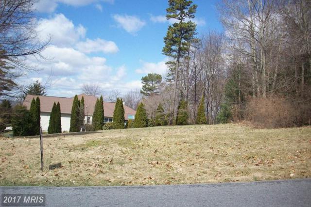 6187 Greenbriar Terrace, Fayetteville, PA 17222 (#FL9897661) :: Pearson Smith Realty