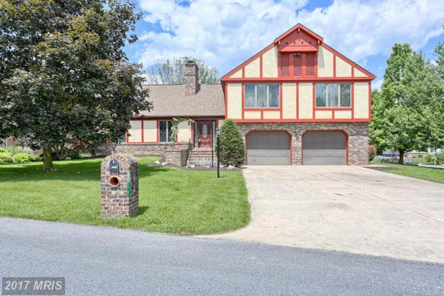 3539 Eagle Drive, Chambersburg, PA 17202 (#FL9901231) :: LoCoMusings