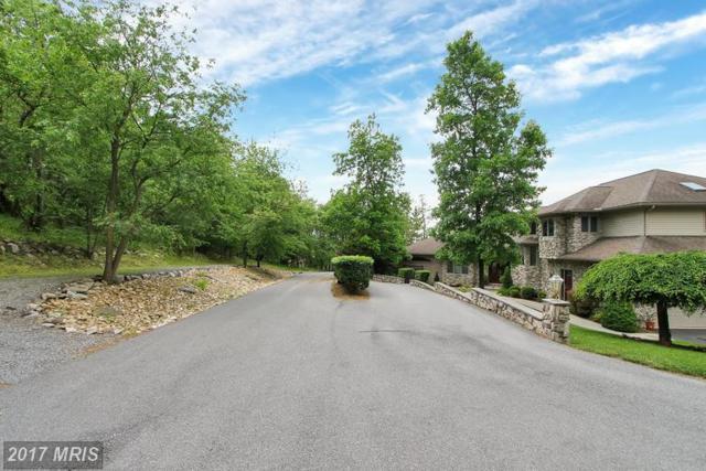 Weatherstone Drive, Waynesboro, PA 17268 (#FL9954844) :: Pearson Smith Realty