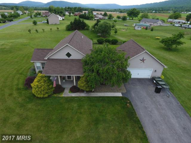6805 Brant Drive, Mercersburg, PA 17236 (#FL9955153) :: Pearson Smith Realty