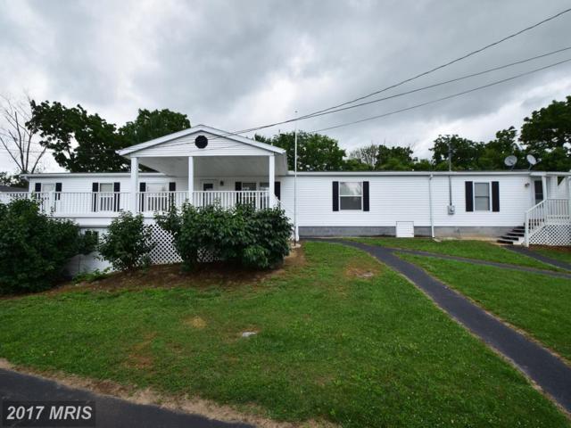 1177 East Avenue, Waynesboro, PA 17268 (#FL9986979) :: LoCoMusings