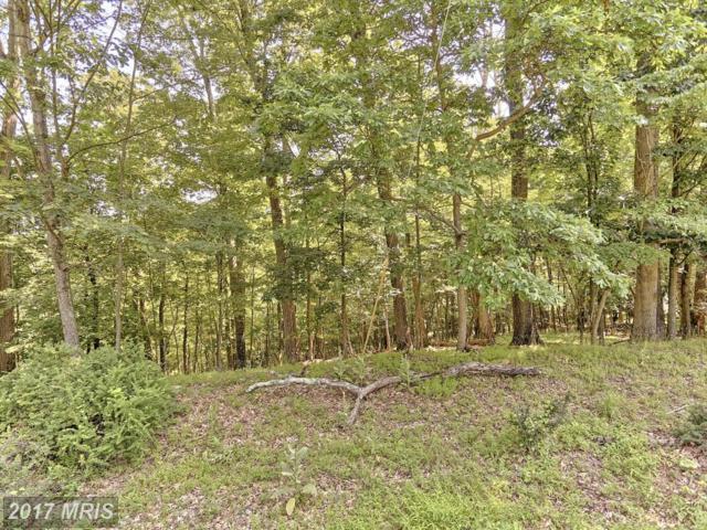 Pen Mar Road, Waynesboro, PA 17268 (#FL9991770) :: LoCoMusings
