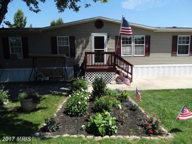 284 Waverly Court, Fayetteville, PA 17222 (#FL9995786) :: Pearson Smith Realty