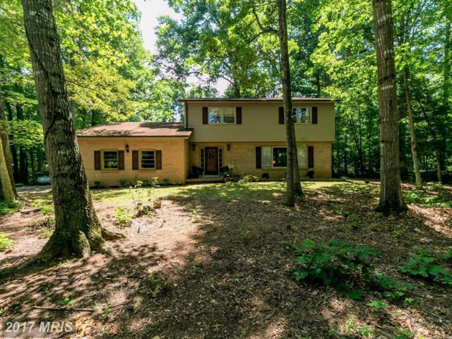 3299 Daffan Drive, Catlett, VA 20119 (#FQ10001876) :: Jacobs & Co. Real Estate