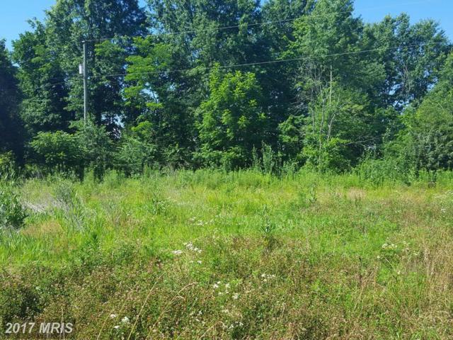 Bristerburg Road, Catlett, VA 20119 (#FQ10024844) :: Jacobs & Co. Real Estate