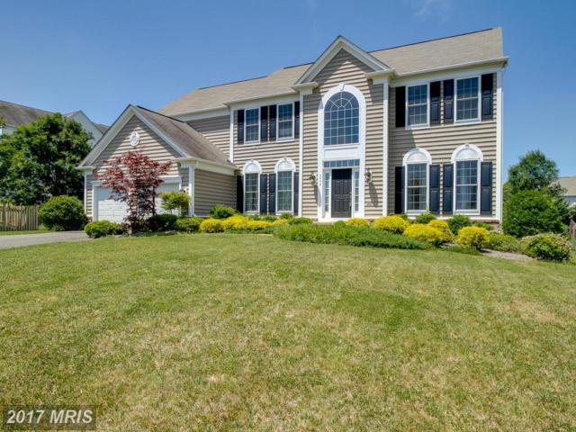 6404 Mull Court, Warrenton, VA 20187 (#FQ10032627) :: Colgan Real Estate