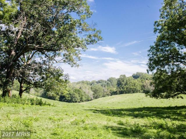Maidstone Road, Rectortown, VA 20140 (#FQ10033950) :: LoCoMusings