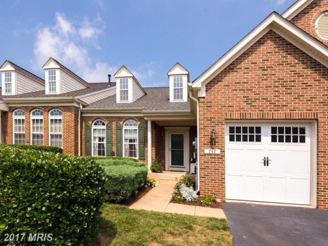 252 Sapphire Court, Warrenton, VA 20186 (#FQ10035131) :: Colgan Real Estate