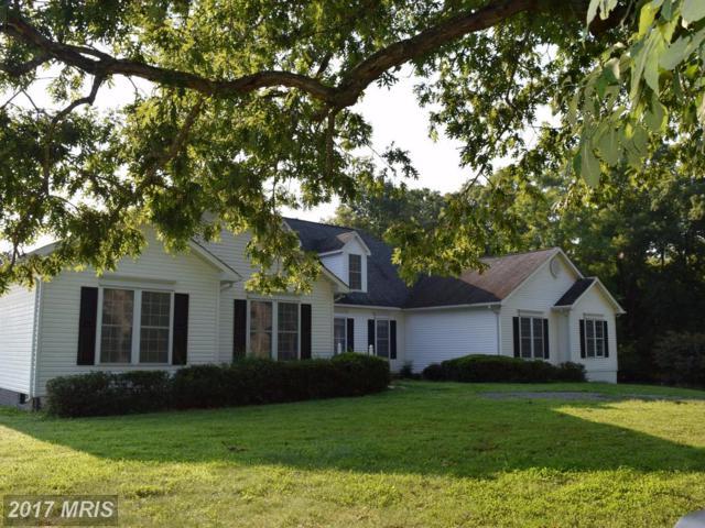 8424 Mes Enfants Court, Warrenton, VA 20186 (#FQ10036850) :: Colgan Real Estate