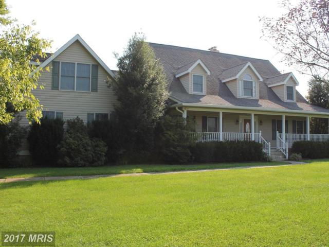 10432 Adkins Farm Lane, Catlett, VA 20119 (#FQ10038974) :: Jacobs & Co. Real Estate