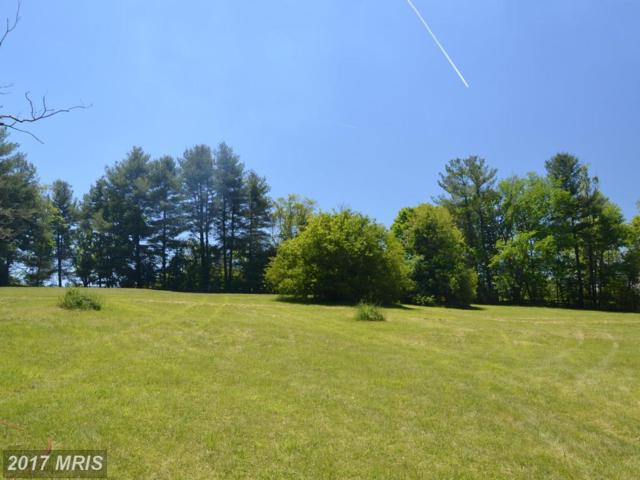 John Mosby Highway, Middleburg, VA 20117 (#FQ10045003) :: Pearson Smith Realty