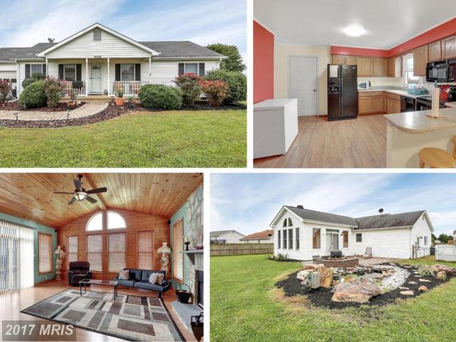 11235 Craig Lane, Bealeton, VA 22712 (#FQ10060163) :: The Hagarty Real Estate Team