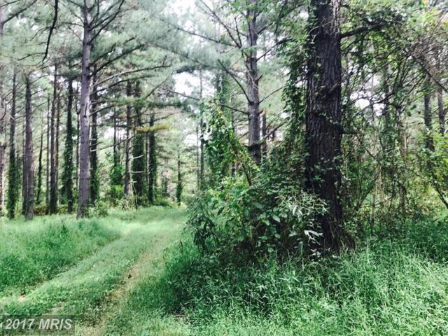 John Marshall Highway, The Plains, VA 20198 (#FQ10063730) :: The Nemerow Team