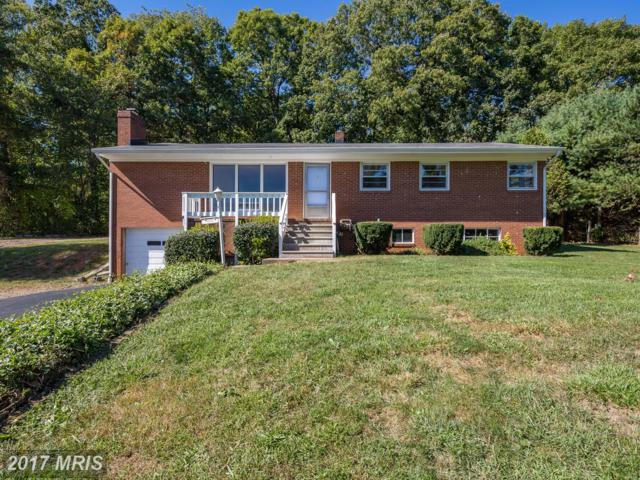 9258 Lee Highway, Warrenton, VA 20186 (#FQ10074631) :: Jacobs & Co. Real Estate