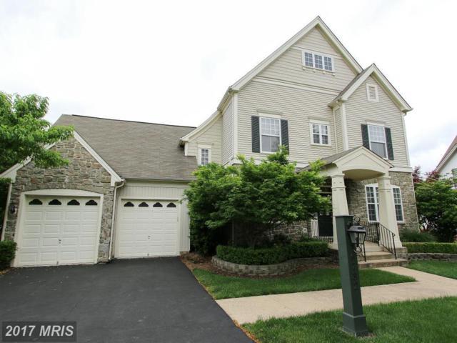 6732 Eckert Court, Warrenton, VA 20187 (#FQ10104843) :: Colgan Real Estate