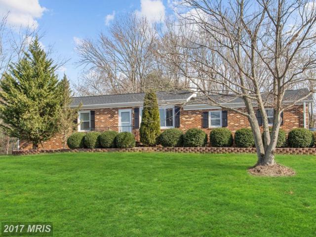 10695 Marsh Road, Bealeton, VA 22712 (#FQ10114053) :: Jacobs & Co. Real Estate