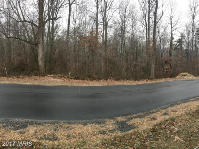 Free State Road, Marshall, VA 20115 (#FQ10124704) :: Network Realty Group