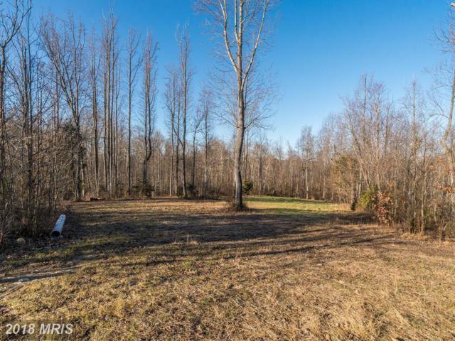 5654 Selone Trail, Marshall, VA 20115 (#FQ10127053) :: Network Realty Group