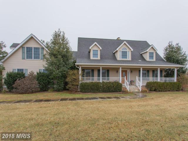 10432 Adkins Farm Lane, Catlett, VA 20119 (#FQ10132696) :: Jacobs & Co. Real Estate