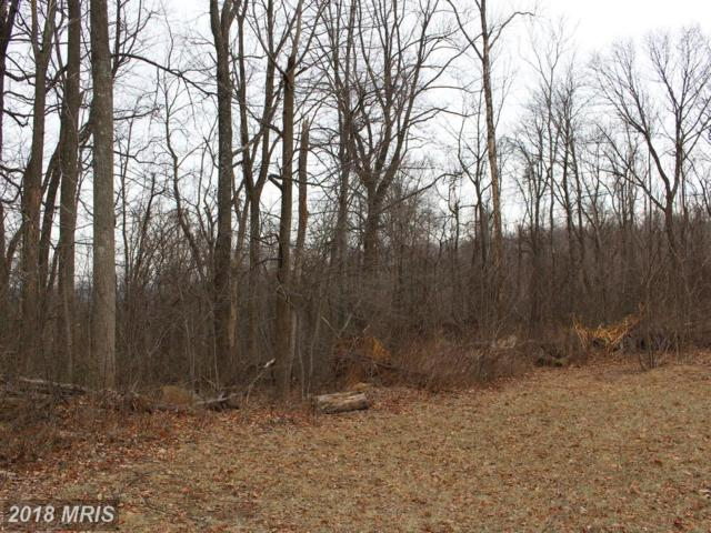 Fiery Run Road, Linden, VA 22642 (#FQ10136131) :: Network Realty Group