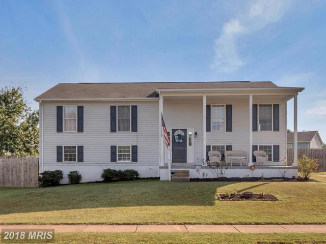 11701 Battle Ridge Drive, Remington, VA 22734 (#FQ10136728) :: Bic DeCaro & Associates