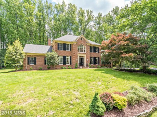 6823 Sandstone Court, Warrenton, VA 20187 (#FQ10138403) :: The Nemerow Team