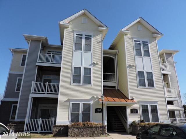6163 Willow Place #301, Bealeton, VA 22712 (#FQ10171940) :: Jacobs & Co. Real Estate