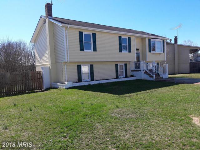 10910 Blake Lane, Bealeton, VA 22712 (#FQ10178978) :: Jacobs & Co. Real Estate