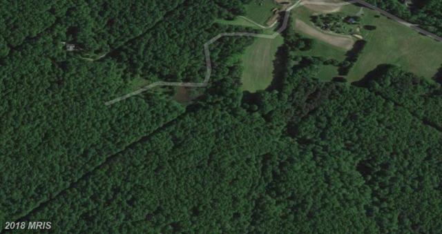 1503 Cromwell Road, Catlett, VA 20119 (#FQ10180501) :: Jacobs & Co. Real Estate