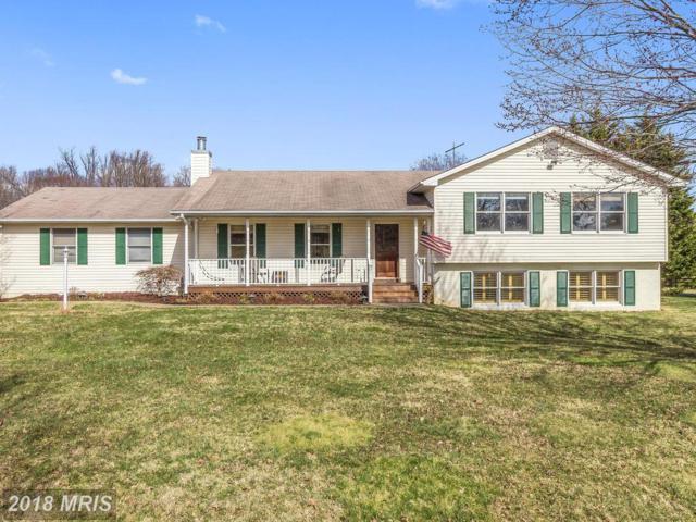 7081 Grays Mill Road, Warrenton, VA 20187 (#FQ10183687) :: Jacobs & Co. Real Estate