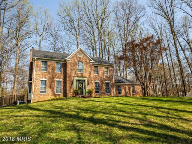 5840 Windsor Retreat, Warrenton, VA 20187 (#FQ10208748) :: The Tom Conner Team