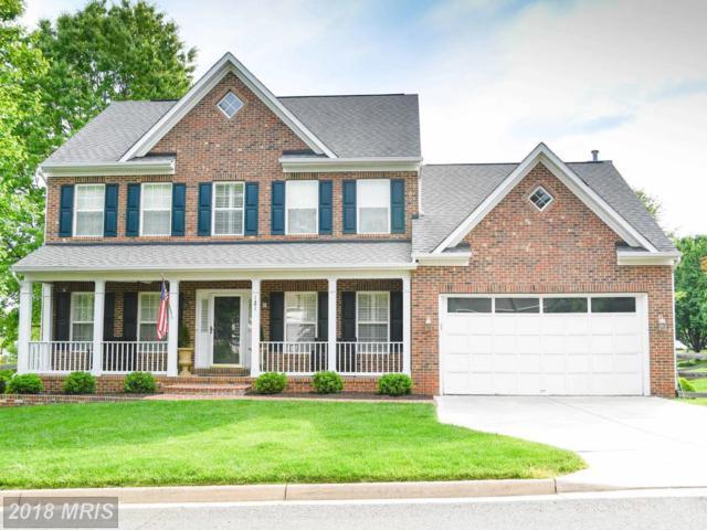 121 English Chase Lane, Warrenton, VA 20186 (#FQ10224539) :: The Hagarty Real Estate Team
