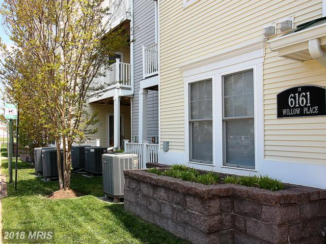 6161 Willow Place #205, Bealeton, VA 22712 (#FQ10237495) :: The Hagarty Real Estate Team
